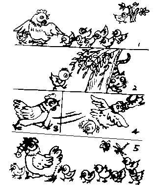 看图写话作文400字_看图写话作文 不听话的小黄鸡